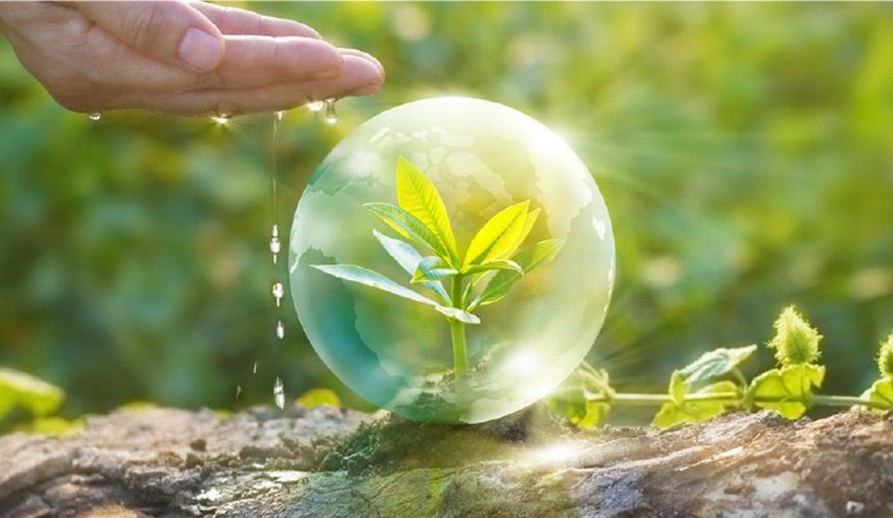 פתרונות איכות הסביבה