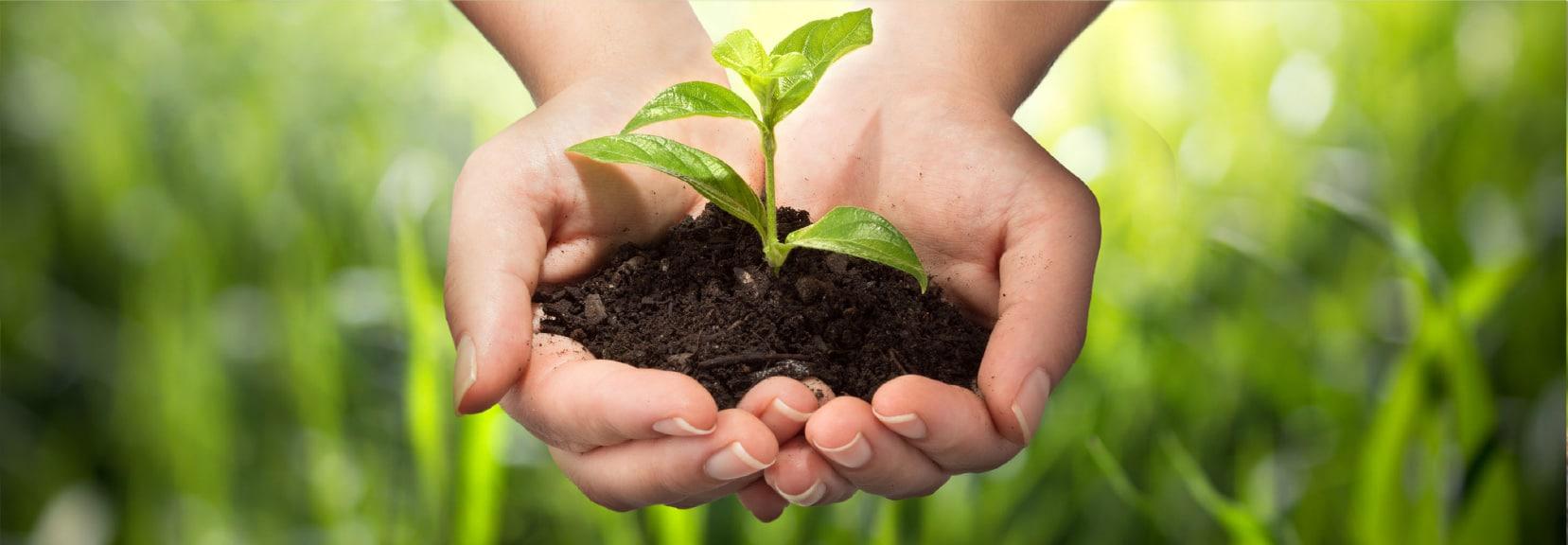 ניהול פרויקטים בתחום איכות הסביבה